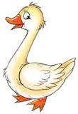 Cartoon duckling Stock Image