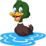 Cartoon ducks floats on water Stock Photography