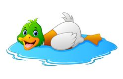 Cartoon ducks floats on water Royalty Free Stock Photos
