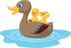 Cartoon ducks on the pond Stock Photo