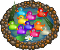 Cartoon Ducks on a Pond. Ten colourful cartoon ducks floating on an oval pond with water lilies Royalty Free Stock Photography