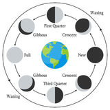 Cartoon Earth with Moon Phases Stock Images