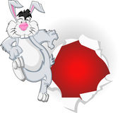 Cartoon easter bunny. Jumping out of hole Royalty Free Stock Image