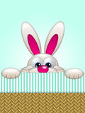 Cartoon easter bunny in basket Royalty Free Stock Photo