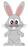 Cartoon easter bunny character on white Royalty Free Stock Images