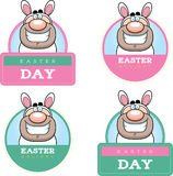 Cartoon Easter Bunny Man Graphic Stock Photo