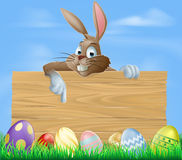 Cartoon Easter bunny pointing Royalty Free Stock Photography