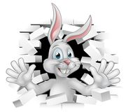 Cartoon Easter Bunny Rabbit. Easter bunny rabbit cartoon character breaking through a white background brick wall and waving Royalty Free Stock Image