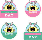 Cartoon Easter Chick Graphic Stock Photo