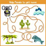 Cartoon of Education will continue the logical way home of colourful animals. Help marsupial the Koala bear to get home to Austral Stock Image