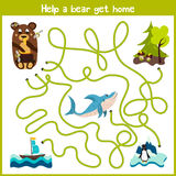 Cartoon of Education will continue the logical way home of colourful animals. Take a bear home in the woods by wild predatory shar Stock Image