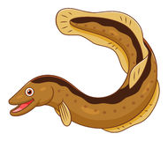 Cartoon eel Stock Photo