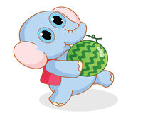 Cartoon elephant carrying a watermelon Stock Photos