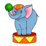 Cartoon elephant circus Royalty Free Stock Image