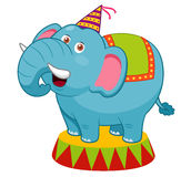 Cartoon Elephant circus Royalty Free Stock Photography