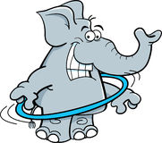Cartoon elephant with a hula hoop. Stock Images