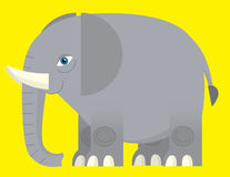 Cartoon elephant - illustration for the children Stock Photos