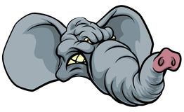 Cartoon Elephant Mascot Royalty Free Stock Image