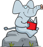 Cartoon Elephant Reading Stock Images