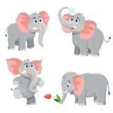 Cartoon elephant set Royalty Free Stock Photo