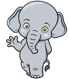 Cartoon Elephant Stock Photos