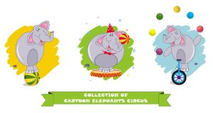 Cartoon elephants in different poses on the white background vector illustration