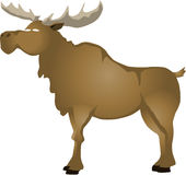 Cartoon elk Royalty Free Stock Photos