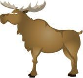 Cartoon elk royalty free stock photos