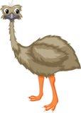 Cartoon emu Stock Photo
