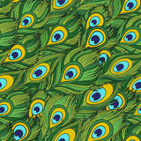 Cartoon ethnic vector Feathers seamless pattern Stock Photo