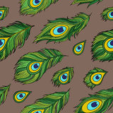 Cartoon ethnic vector Feathers seamless pattern Stock Images