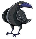 Cartoon of evil black crow. Isolated on white Royalty Free Stock Image