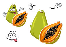 Cartoon exotic hawaiian green papaya fruit Royalty Free Stock Photo