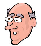 Cartoon face illustration. Vector illustration of a cartoon face Royalty Free Stock Images