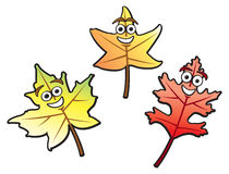 Cartoon Fall Leaves Royalty Free Stock Photos