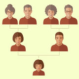 Cartoon family tree,. Vector people, generation illustration Stock Image