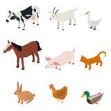 Cartoon Farm Animal Color Set. Vector. Cartoon Farm Animal Color Set Isolated on a White Background Various Pet Livestock of Ranch. Vector illustration Royalty Free Stock Photo