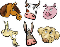 Cartoon farm animals heads set Stock Images