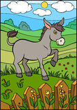 Cartoon farm animals for kids. Cute small donkey. Stock Images
