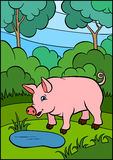 Cartoon farm animals for kids. Little cute pig. Stock Image
