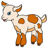 Cartoon farm animals for kids. Little cute spotted baby goat. Stock Photography