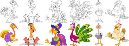 Cartoon farm birds set Royalty Free Stock Image