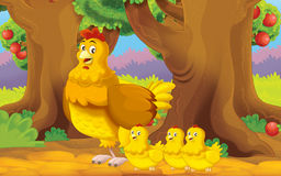 Cartoon farm scene with animal - hen with chickens - family. Happy and colorful traditional illustration for children royalty free illustration