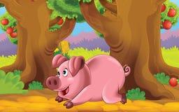 Cartoon farm scene with animal - pig Royalty Free Stock Image