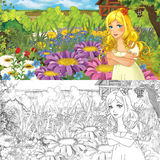 Cartoon farm scene with little elf girl on flowers - with coloring page - image for different fairy tales Stock Photo