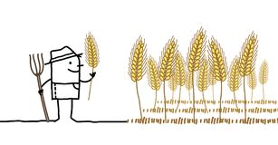 Cartoon Farmer and Wheat Field. Vector Cartoon Farmer and Wheat Field Royalty Free Stock Photos