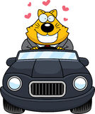 Cartoon Fat Cat Driving Love Royalty Free Stock Images