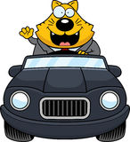 Cartoon Fat Cat Driving Waving Royalty Free Stock Photo