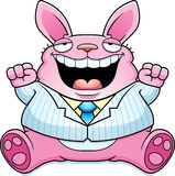 Cartoon Fat Easter Bunny Suit Royalty Free Stock Images