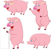 Cartoon fat pig collection Stock Photography